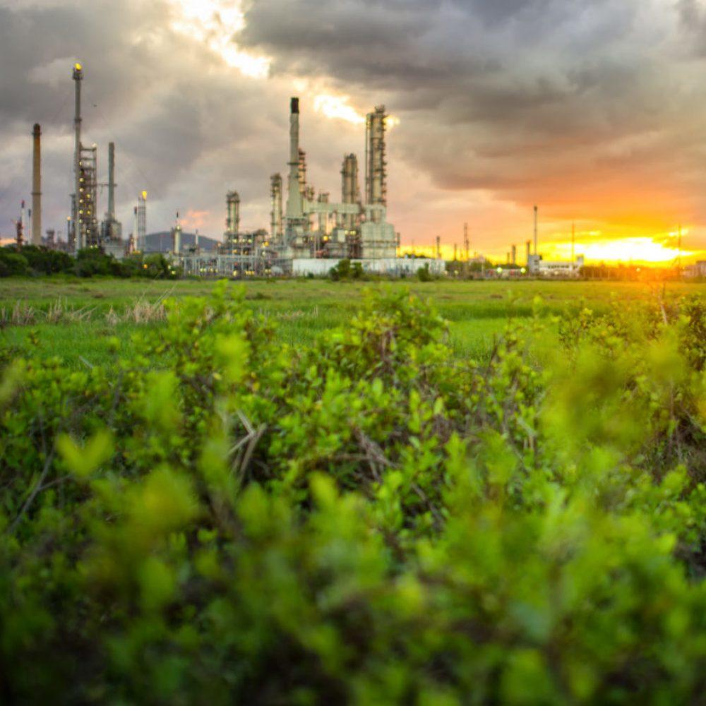 Mann steht in grünem Feld und blickt in den Sonnenuntergang. Im Hintergrund sieht man eine Fabrik.